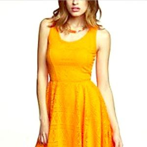 Express Neon Orange Fit and Flare Dress